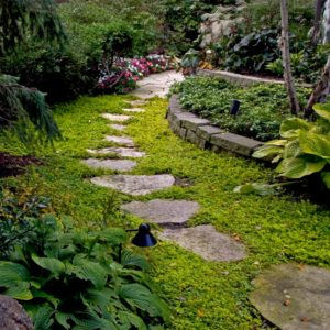 Stepping-Stone-Path